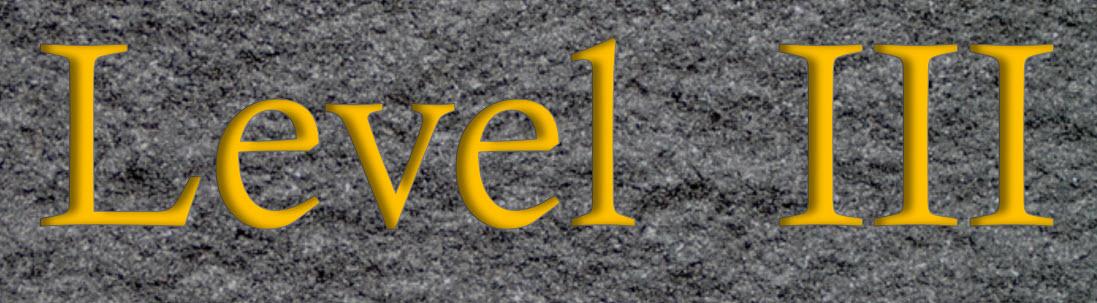 Level III Logo