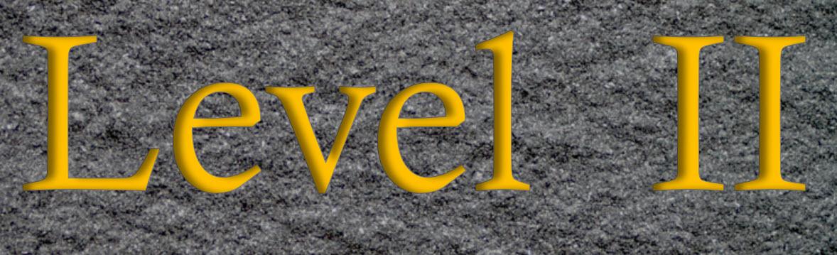 Level II Logo